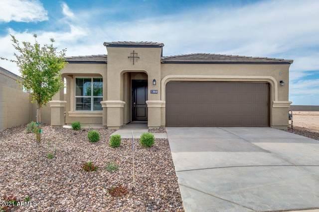 3013 N Camden Drive N, Florence, AZ 85132 (MLS #6263013) :: Yost Realty Group at RE/MAX Casa Grande