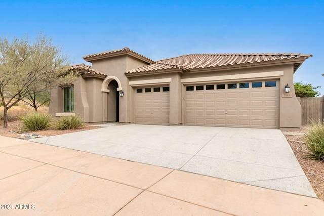 2505 W Via De Pedro Miguel, Phoenix, AZ 85086 (MLS #6263052) :: Yost Realty Group at RE/MAX Casa Grande
