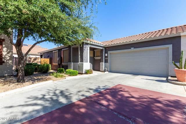 995 E Cantebria Drive, Gilbert, AZ 85296 (MLS #6263063) :: Yost Realty Group at RE/MAX Casa Grande