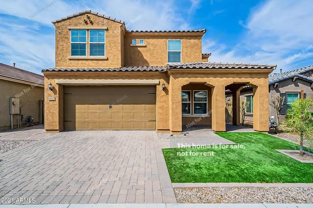 1827 W Bonanza Drive, Phoenix, AZ 85085 (MLS #6263092) :: Yost Realty Group at RE/MAX Casa Grande