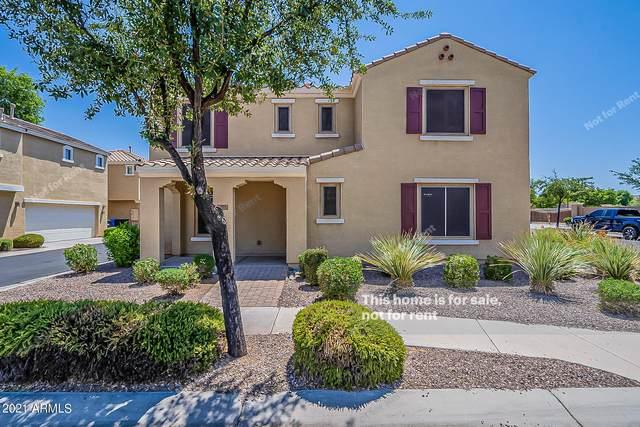 1871 S Balboa Drive, Gilbert, AZ 85295 (MLS #6263095) :: Yost Realty Group at RE/MAX Casa Grande