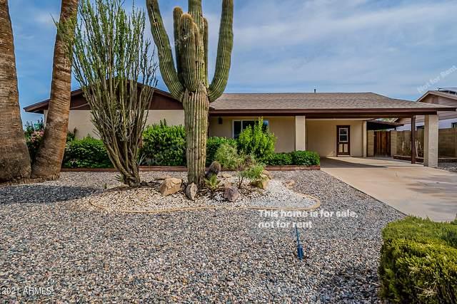 4236 W Garden Drive, Phoenix, AZ 85029 (MLS #6263151) :: Yost Realty Group at RE/MAX Casa Grande