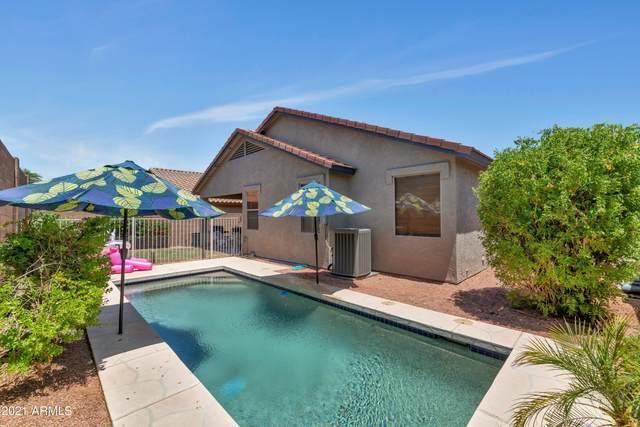 26910 N 84TH Lane, Peoria, AZ 85383 (MLS #6263152) :: Yost Realty Group at RE/MAX Casa Grande