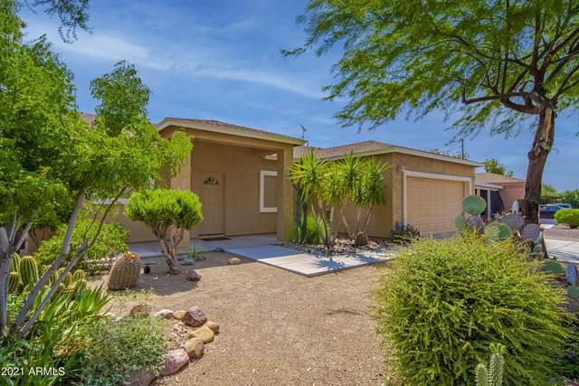 201 Peretz Circle, Morristown, AZ 85342 (MLS #6263157) :: Service First Realty