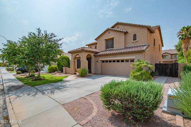 4601 E Hazeltine Way, Chandler, AZ 85249 (MLS #6263187) :: Yost Realty Group at RE/MAX Casa Grande