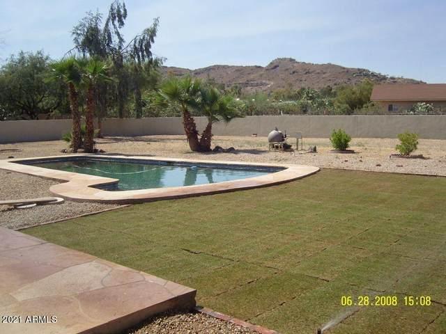 6602 E Lincoln Drive, Paradise Valley, AZ 85253 (MLS #6263223) :: Elite Home Advisors
