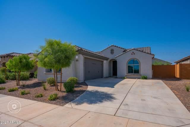 26065 W Quail Avenue, Buckeye, AZ 85396 (MLS #6263284) :: Yost Realty Group at RE/MAX Casa Grande