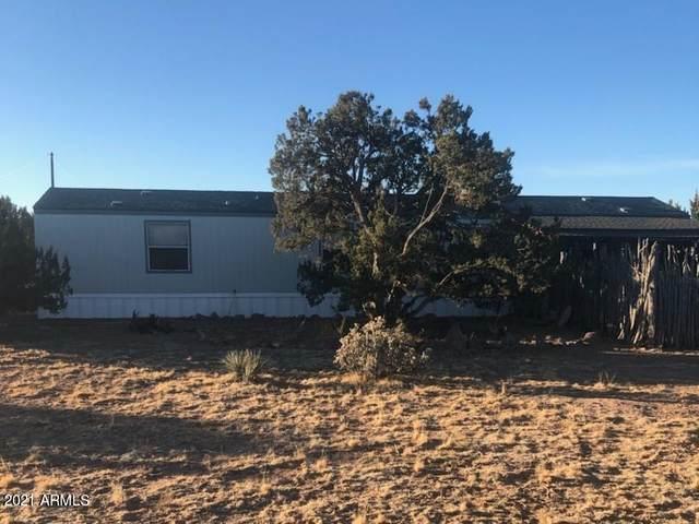 25955 W Ventura Drive, Seligman, AZ 86337 (MLS #6263289) :: The Laughton Team