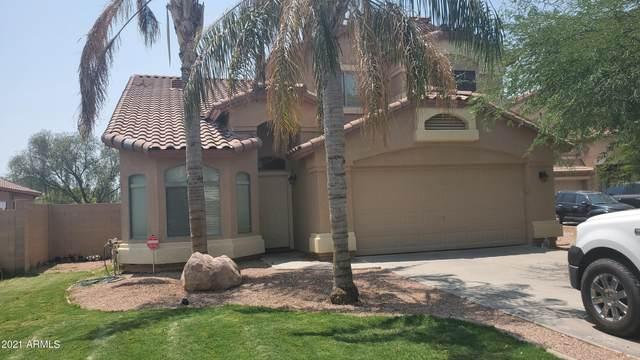 35058 N Aubrac Circle, San Tan Valley, AZ 85143 (MLS #6263303) :: Yost Realty Group at RE/MAX Casa Grande