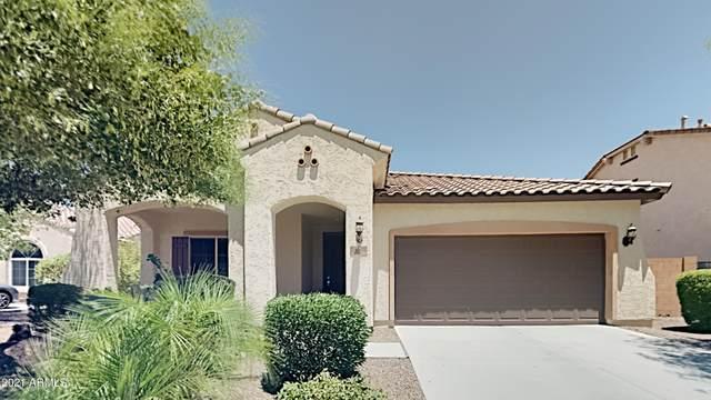 25954 W Potter Drive, Buckeye, AZ 85396 (MLS #6263321) :: Elite Home Advisors