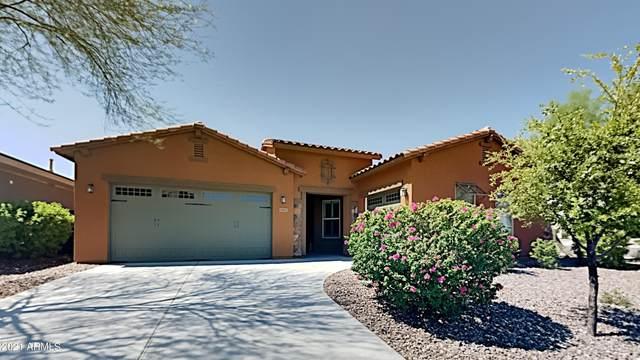 31692 N 131ST Drive, Peoria, AZ 85383 (MLS #6263322) :: Yost Realty Group at RE/MAX Casa Grande