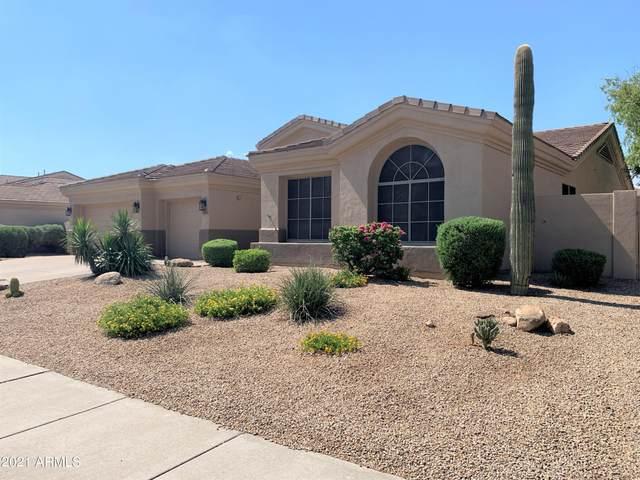7492 E Buteo Drive, Scottsdale, AZ 85255 (MLS #6263352) :: Dave Fernandez Team   HomeSmart