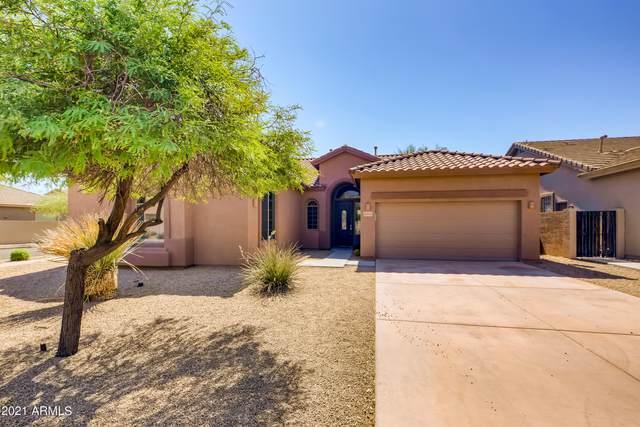 35712 N 31ST Drive, Phoenix, AZ 85086 (MLS #6263375) :: Yost Realty Group at RE/MAX Casa Grande