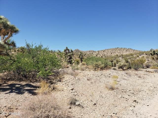 1900 W Sentinel Drive, Meadview, AZ 86444 (MLS #6263405) :: Service First Realty