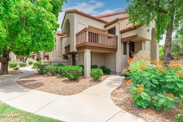 839 S Westwood #258, Mesa, AZ 85210 (MLS #6263432) :: Conway Real Estate