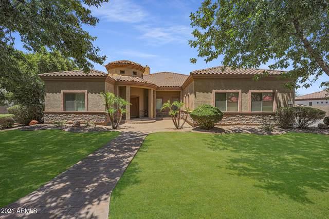 2902 E Gary Way, Phoenix, AZ 85042 (MLS #6263503) :: Yost Realty Group at RE/MAX Casa Grande