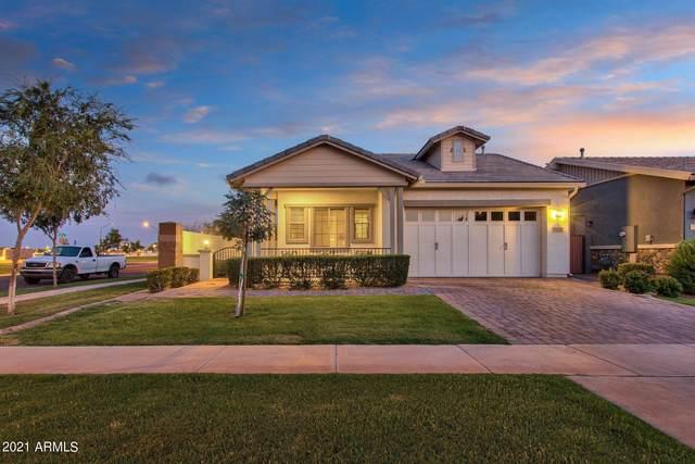 3163 E Austin Drive, Gilbert, AZ 85296 (MLS #6263518) :: Yost Realty Group at RE/MAX Casa Grande
