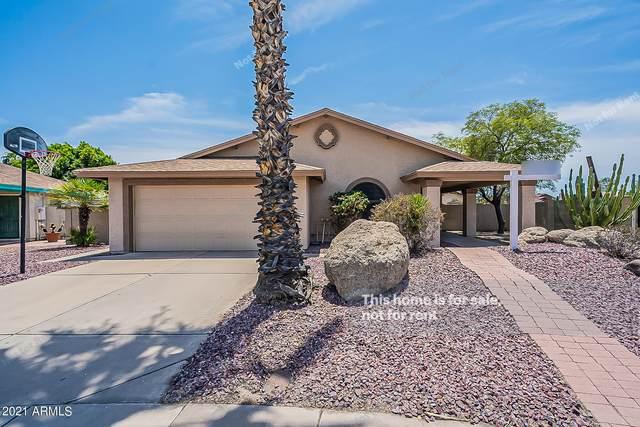 6433 W Beverly Lane, Glendale, AZ 85306 (MLS #6263551) :: Yost Realty Group at RE/MAX Casa Grande