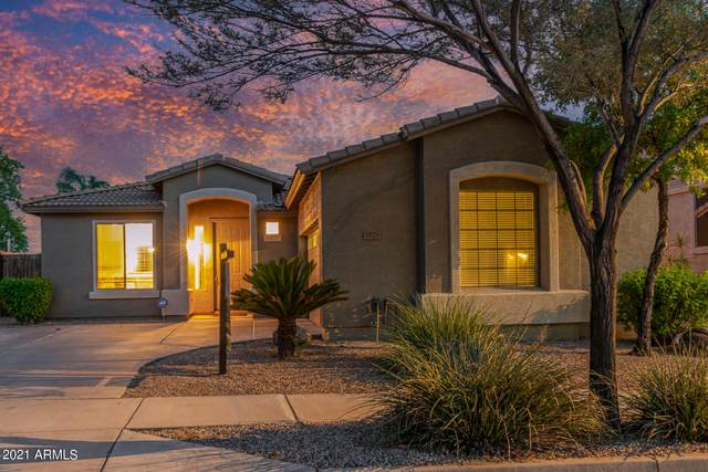 2529 W Sat Nam Way, Phoenix, AZ 85086 (MLS #6263917) :: Conway Real Estate
