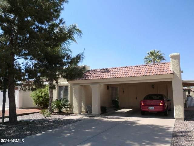 26010 S Jardin Drive, Sun Lakes, AZ 85248 (MLS #6263931) :: The Copa Team | The Maricopa Real Estate Company