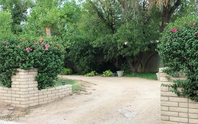 Phoenix, AZ 85018 :: Yost Realty Group at RE/MAX Casa Grande