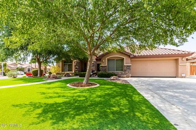 1582 W Musket Way, Chandler, AZ 85286 (MLS #6264076) :: Yost Realty Group at RE/MAX Casa Grande