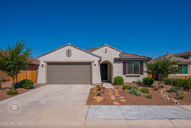 21346 N 260TH Lane, Buckeye, AZ 85396 (MLS #6264096) :: Yost Realty Group at RE/MAX Casa Grande