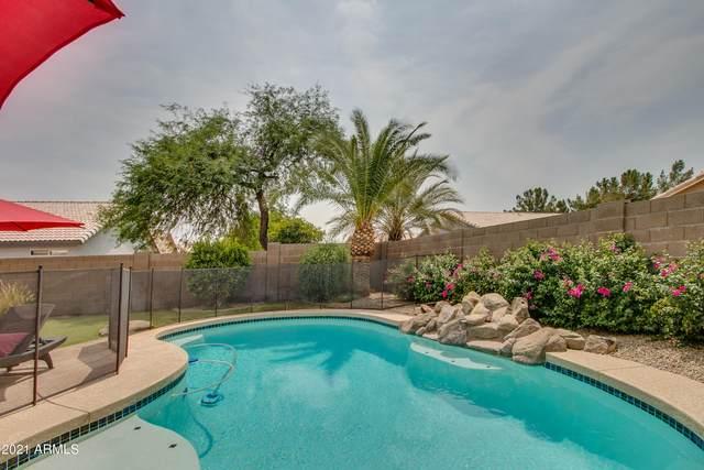 175 W Gail Drive, Gilbert, AZ 85233 (MLS #6264108) :: Yost Realty Group at RE/MAX Casa Grande