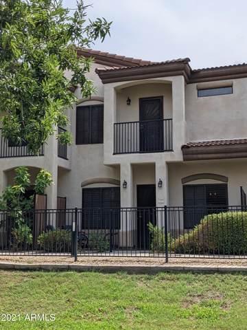 3150 E Beardsley Road #1003, Phoenix, AZ 85050 (MLS #6264114) :: Yost Realty Group at RE/MAX Casa Grande