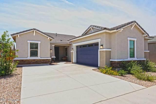 21137 E Camina Buena Vista, Queen Creek, AZ 85142 (MLS #6264181) :: Yost Realty Group at RE/MAX Casa Grande