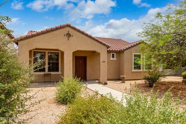 1837 S Rockwell Street, Gilbert, AZ 85295 (MLS #6264193) :: CANAM Realty Group