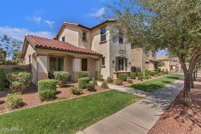 3831 E Sabra Lane, Gilbert, AZ 85296 (MLS #6264228) :: The Daniel Montez Real Estate Group