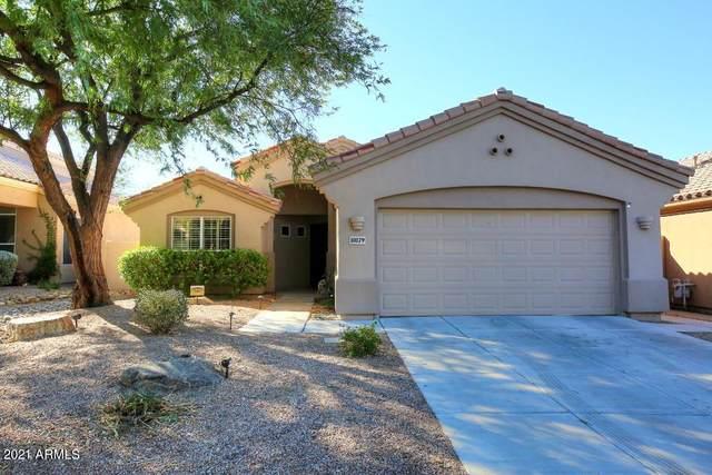10179 E Meadow Hill Drive, Scottsdale, AZ 85260 (MLS #6264252) :: Yost Realty Group at RE/MAX Casa Grande