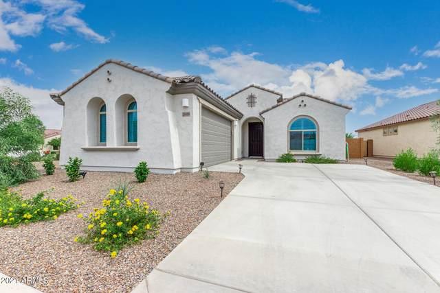 26080 W Quail Avenue, Buckeye, AZ 85396 (MLS #6264275) :: Yost Realty Group at RE/MAX Casa Grande