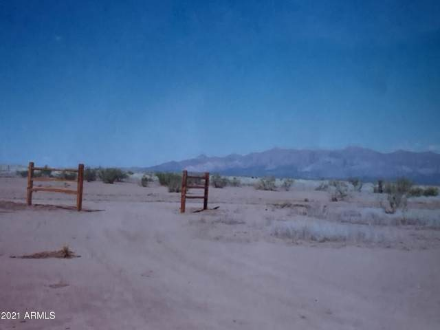 000 SW Whitefeather Road, McNeal, AZ 85617 (MLS #6264296) :: Yost Realty Group at RE/MAX Casa Grande