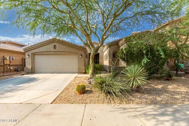 3419 W Zuni Brave Trail, Phoenix, AZ 85086 (MLS #6264385) :: Yost Realty Group at RE/MAX Casa Grande