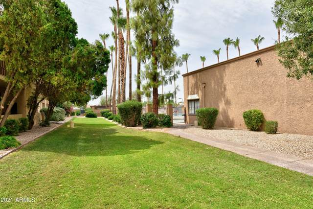8649 E Royal Palm Road #234, Scottsdale, AZ 85258 (MLS #6264404) :: Dave Fernandez Team | HomeSmart