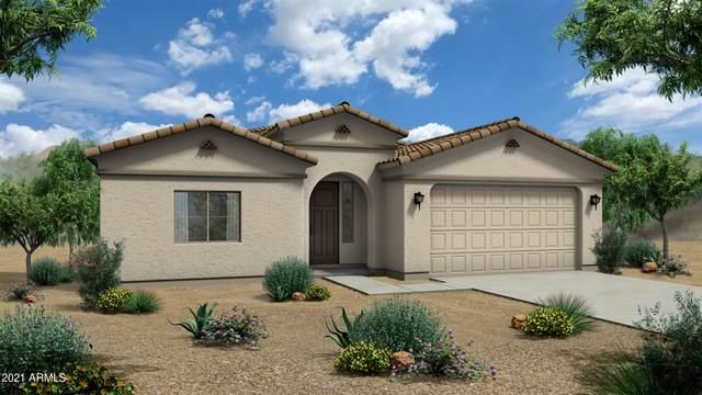 1381 E Avenida Isabela, Casa Grande, AZ 85122 (MLS #6264409) :: Yost Realty Group at RE/MAX Casa Grande
