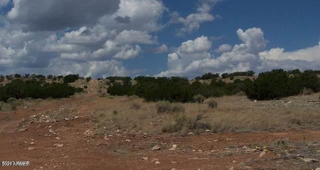 Lot 457 Chevelon Canyon Ranch, Overgaard, AZ 85933 (MLS #6264429) :: The Newman Team
