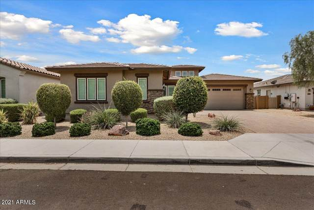 14583 W Medlock Drive, Litchfield Park, AZ 85340 (MLS #6264434) :: Long Realty West Valley