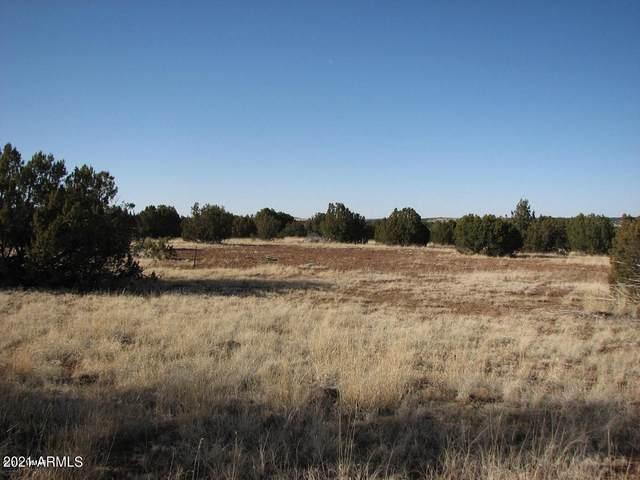 Lot 297 Chevelon Canyon Ranch, Overgaard, AZ 85933 (MLS #6264436) :: Yost Realty Group at RE/MAX Casa Grande