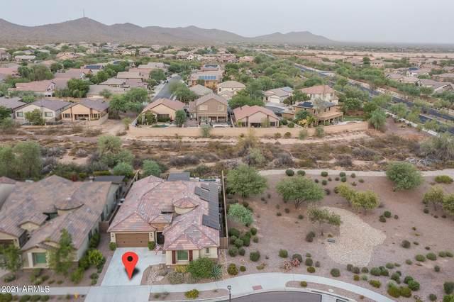 33043 N 25TH Drive, Phoenix, AZ 85085 (MLS #6264447) :: Yost Realty Group at RE/MAX Casa Grande