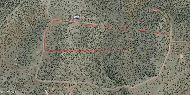 1435 W Canvasback Trail E, Williams, AZ 86046 (MLS #6264503) :: Yost Realty Group at RE/MAX Casa Grande