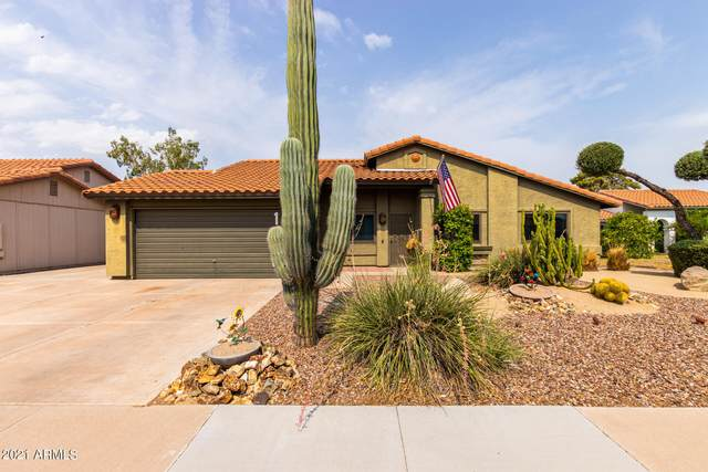 1406 N Santa Anna Court, Chandler, AZ 85224 (MLS #6264586) :: Yost Realty Group at RE/MAX Casa Grande