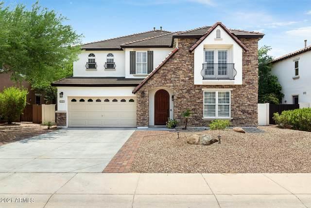 2127 E Desert Broom Drive, Chandler, AZ 85286 (MLS #6264652) :: Yost Realty Group at RE/MAX Casa Grande