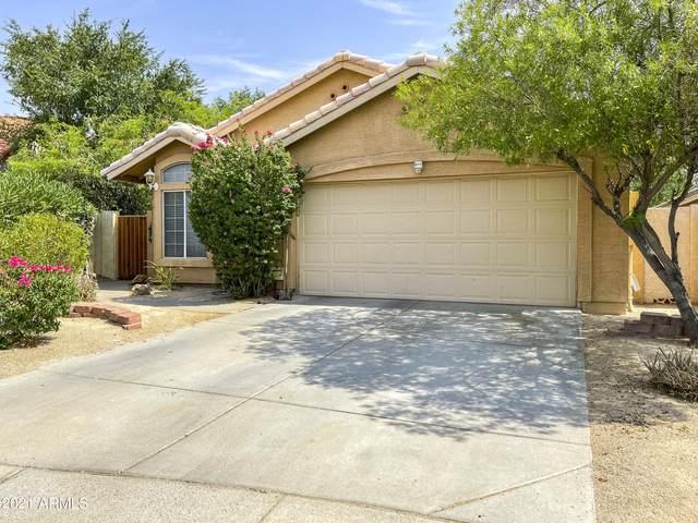 1015 N Longmore Street, Chandler, AZ 85224 (MLS #6264685) :: Devor Real Estate Associates