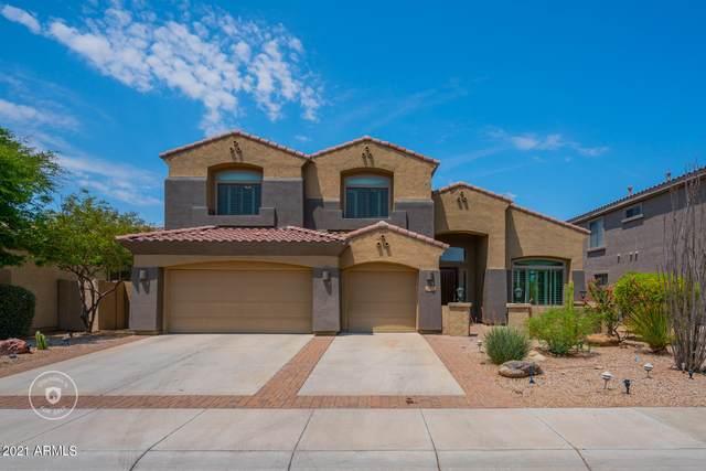 18376 W Sweet Acacia Drive, Goodyear, AZ 85338 (MLS #6264736) :: Yost Realty Group at RE/MAX Casa Grande