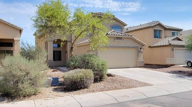 296 W Hereford Drive, San Tan Valley, AZ 85143 (MLS #6264774) :: Yost Realty Group at RE/MAX Casa Grande