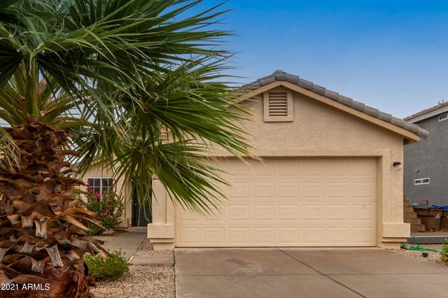 1491 E Stirrup Lane, San Tan Valley, AZ 85143 (MLS #6264850) :: Yost Realty Group at RE/MAX Casa Grande
