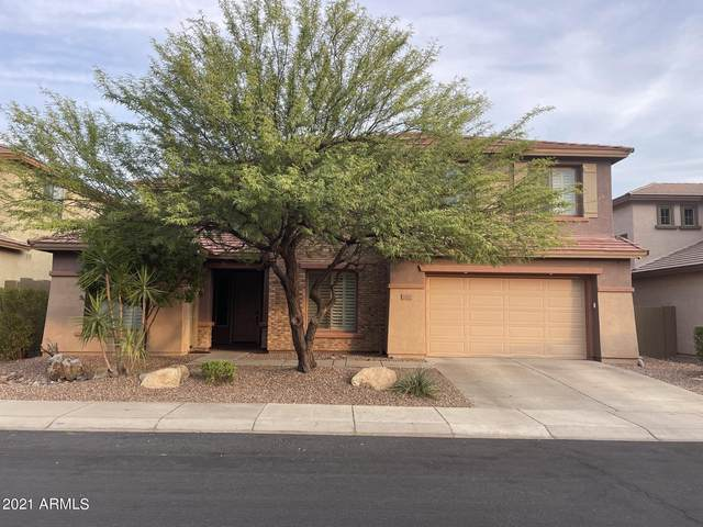 2321 W Clearview Trail, Phoenix, AZ 85086 (MLS #6264854) :: Yost Realty Group at RE/MAX Casa Grande